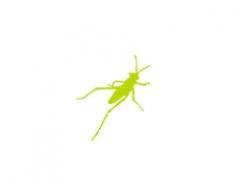 learn Grasshopper 3d training course