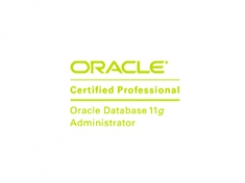learn OCP Oracle Certified Professional 11g do banco de dados training course